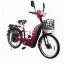 ZT-02 Electricial bike NEW